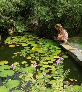 The-Garden-of-Wellness-1